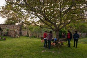 Enjoy the Transylvania countryisde