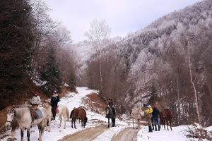 Go for a horse ride in the Romanian hills
