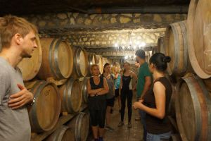 Experience a premium winery visit and wine tasting