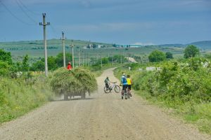 Enjoy a leisure bike ride surrounded by Romanian vineyards
