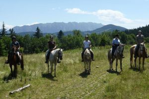 Horse riding in Romanian: a unique experience!