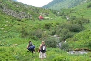 Pick up from Brasov and hike to the mountain cabin