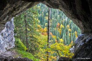 Hike on wild trails in Apuseni Mountains: go through caves & feel like an 'outlaw'
