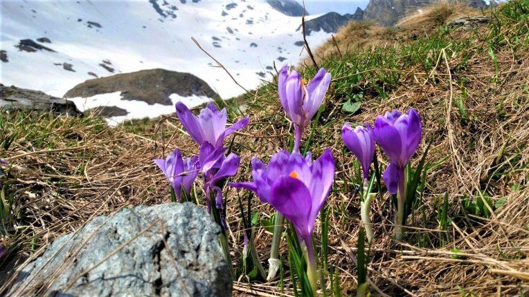 Breathtaking view in any season, in the Fagaras Mountains