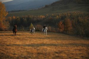 Horse riding guided tour Transylvania, Romania