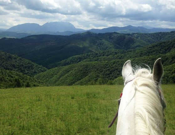 Horse ridding trip in Transylvania, Romania