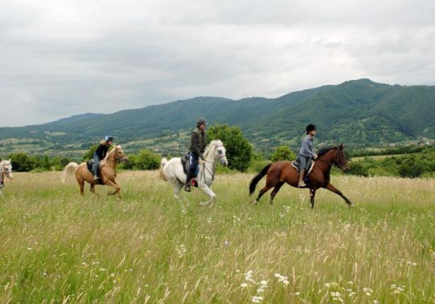 Horse ridding in Transylvania