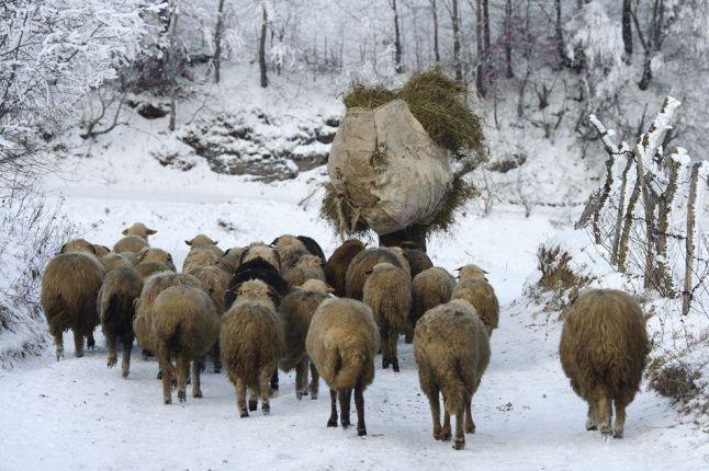 Photo trip Romania