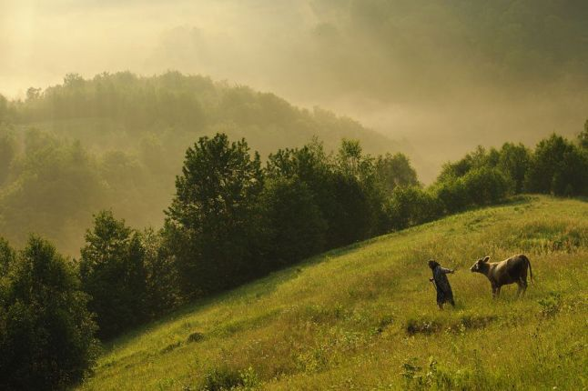 Photo tour in Romania