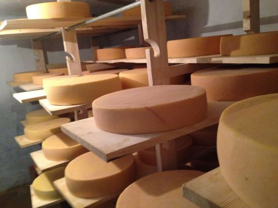 The cheese you'll be making and tasting!