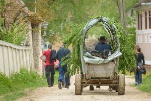 Agrotourism in Transylvania stay