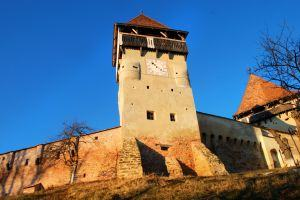 Alma Vii Fortress