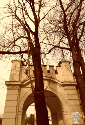 Day trip in Timisoara