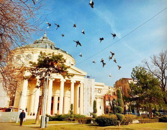 Why Visit Bucharest
