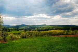 Hills in Bucovina