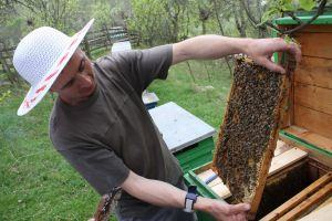 Visit to a local beekeeper and honey tasting!