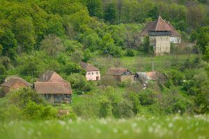 Farmhouse stay in Transylvania