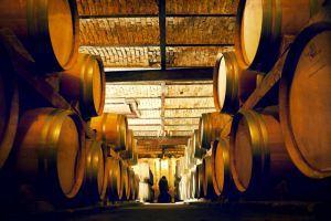Optional: secondary wine tasting