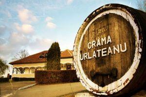 Urlateanu wine cellar