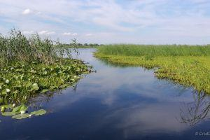 Visit the Danube Delta tour