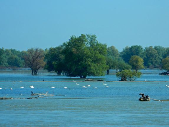Best of Danube Delta tour