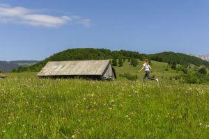 Hike in the beautiful Carpathian Mountains
