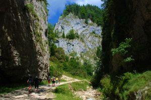 The spectacular Zarnesti Gorges