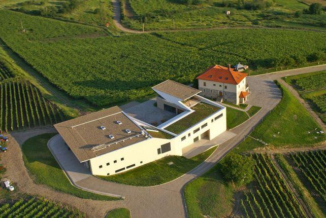 Wine tasting tour in Romania