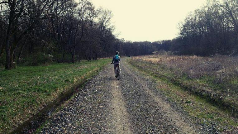 Cycling trough the Green Forest near Timisoara