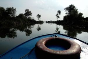 Birdwatching Danube Delta tour