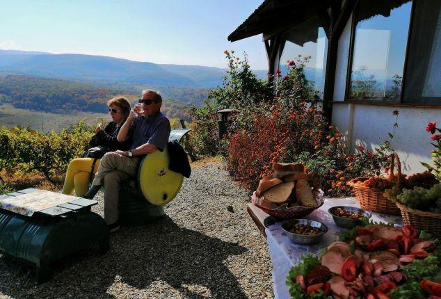 Wine tasting tour in Transylvania