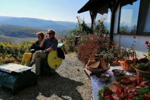 Wine tasting tour in Transylvania