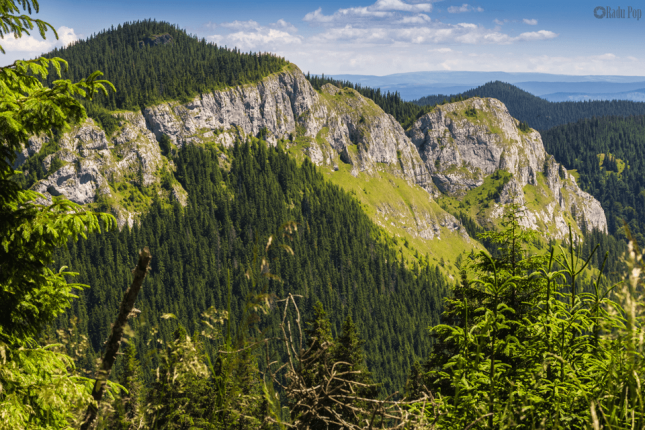 Hiking tour from Cluj-Napoca