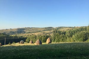 Maramures guided trip