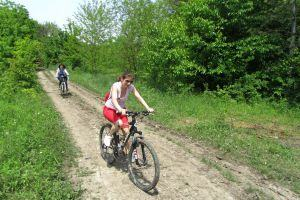 Bike in the beautiful and fresh air of Snagov forest
