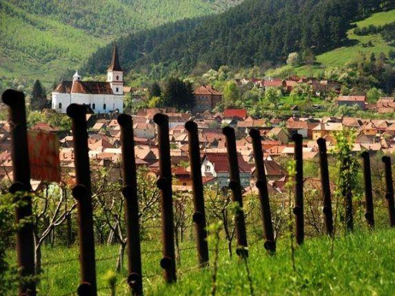 The village of Rasinari