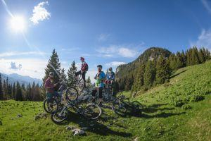 Ride the wild forests around Brasov